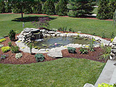 Guide and practice landscaping fountains ponds for Garden pond pictures designs